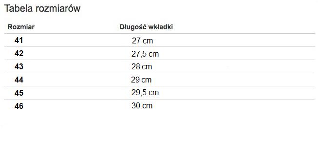 Buty sportowe męskie Długość wkładki od 27 cm do 29 cm